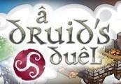 A Druid's Duel Steam CD Key