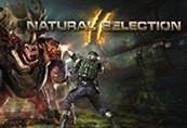 Natural Selection 2 Steam CD Key