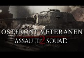 Men of War: Assault Squad 2 - Ostfront Veteranen DLC Steam CD Key