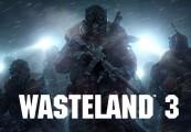 Wasteland 3 PRE-ORDER EU Steam CD Key