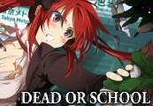 Dead or School EU Steam CD Key