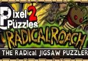 Pixel Puzzles 2: RADical ROACH Steam CD Key
