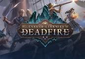 Pillars of Eternity II: Deadfire EU Steam CD Key