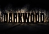 Darkwood Steam CD Key