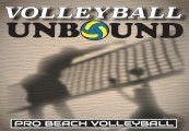 Volleyball Unbound - Pro Beach Volleyball Steam CD Key