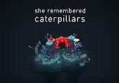 She Remembered Caterpillars Steam CD Key