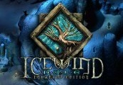 Icewind Dale: Enhanced Edition GOG CD Key