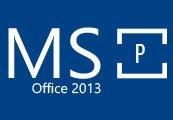 MS Office 2013 Professional OEM Key