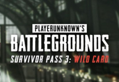 playerunknowns battlegrounds activation product key