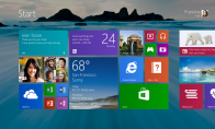 Windows 8.1 Professional OEM RU Key