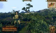 Total War: Warhammer - Realm of The Wood Elves DLC RU VPN Required Steam CD Key
