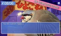 Hatoful Boyfriend Steam Gift