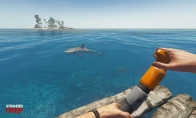 Stranded Deep EU Steam GYG Gift