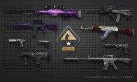 CS:GO 10 Random Skins | Kinguin Case