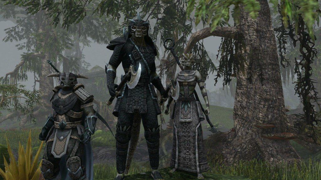 The Elder Scrolls Online: Tamriel Unlimited - Upgrade to