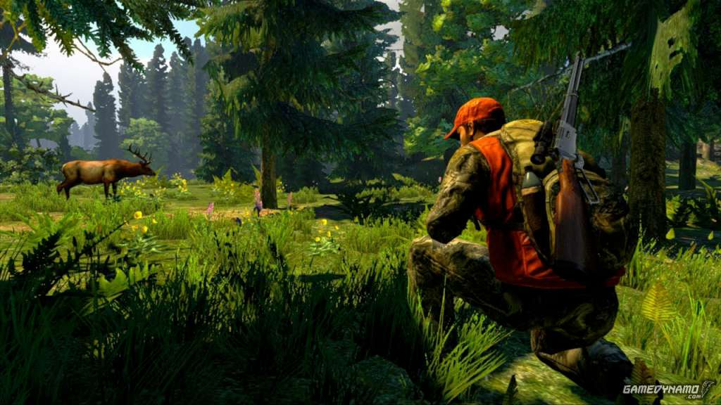 Cabela 39 s hunting expeditions us steam key buy on kinguin for Cabelas fishing nets