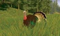 Cabela's Big Game Hunter Trophy Bucks Steam Gift