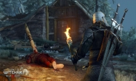 The Witcher 3: Wild Hunt - Expansion Pass Steam Altergift