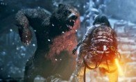 Rise of the Tomb Raider: 20 Year Celebration Edition NA PS4 CD Key