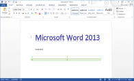 MS Office 2013 Professional OEM Key