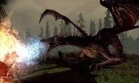 Dragon Age Origins: The Blood Dragon Armor DLC Origin CD Key