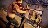 Sleeping Dogs Multilanguage Steam CD Key