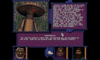 Forgotten Realms: The Archives - Collection Three GOG CD Key