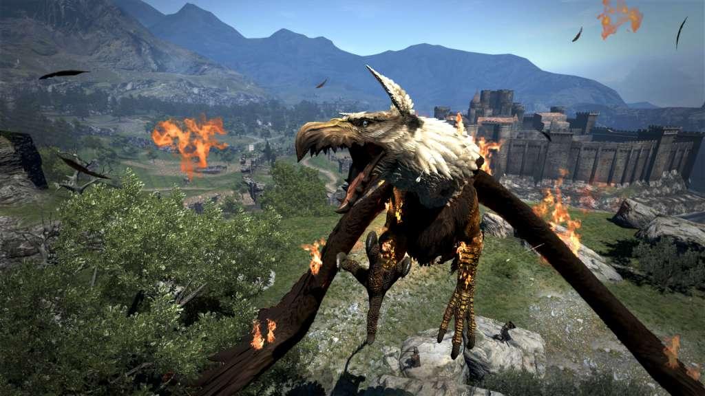 Dragon's Dogma: Dark Arisen Steam CD Key