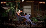Kings of Kung Fu Steam Gift