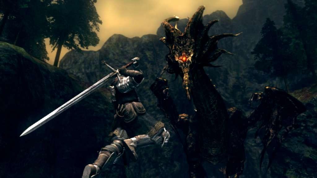 Souls: Prepare To Die Edition Steam Gift