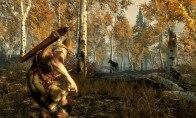The Elder Scrolls V: Skyrim RU VPN Required Steam CD Key
