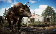 Far Cry 5 Deluxe Edition EMEA Clé Uplay
