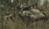 Call of Duty: World at War EU Steam Gift