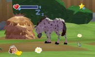 World of Zoo Steam CD Key