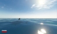Stranded Deep Steam Altergift
