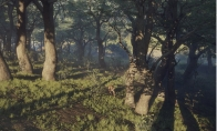 theHunter: Call of the Wild - Parque Fernando DLC Steam Altergift