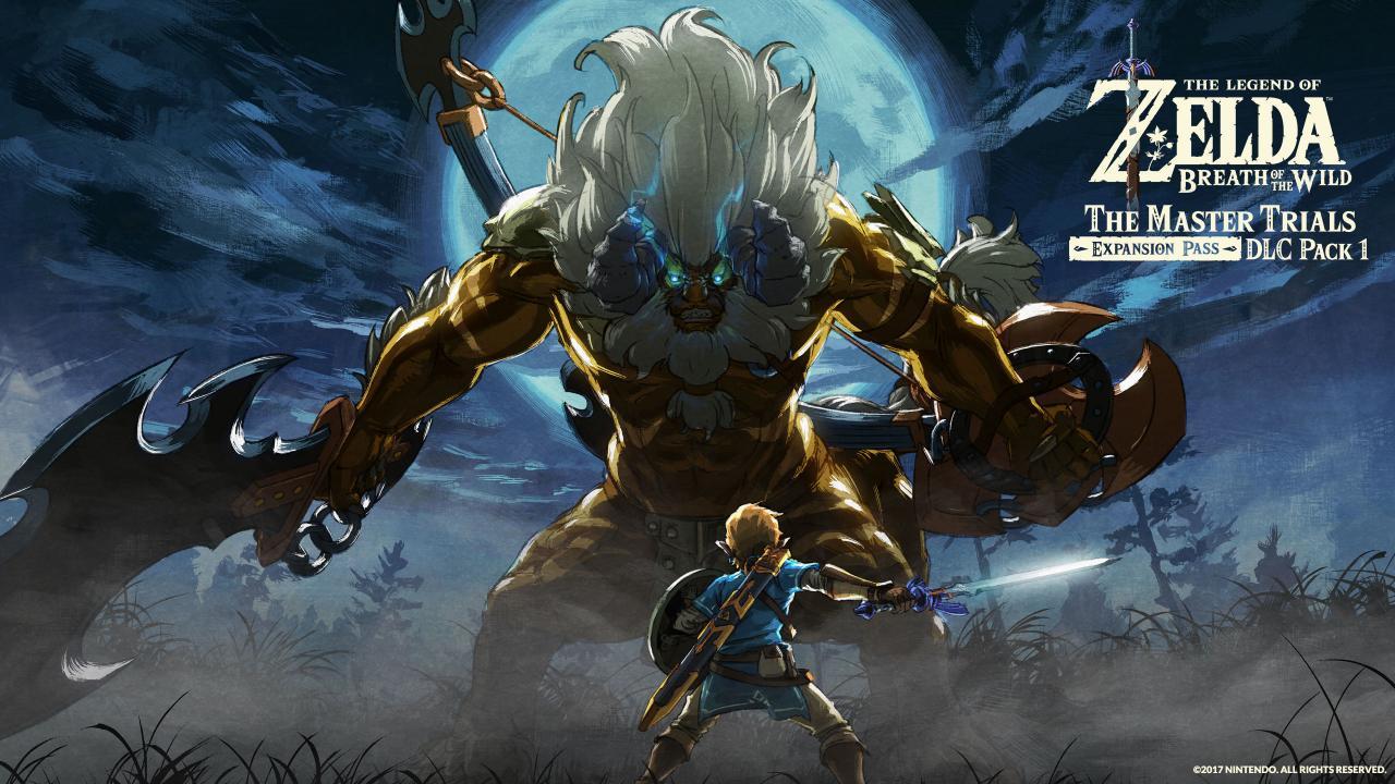 The Legend Of Zelda Breath Wild US Nintendo Switch Key