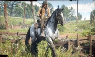 Red Dead Redemption 2 War Horse & Outlaw Survival Kit DLC XBOX One CD Key