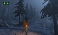 Rise of the Tomb Raider - Endurance Mode DLC LATAM Steam Gift