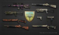 CS:GO 1 Premium Random Skin | Kinguin Case