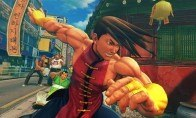 Super Street Fighter IV: Arcade Edition - All-in Costume Pack Steam Gift
