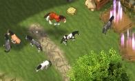 Horse Paradise - My Dream Ranch Steam CD Key