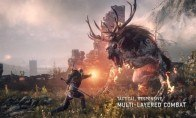The Witcher Trilogy Pack Steam Gift