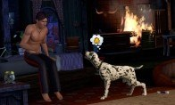 The Sims 3 - Pets Expansion Steam Gift