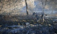 theHunter: Call of the Wild - Medved-Taiga DLC Steam CD Key