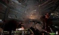 Warhammer: End Times - Vermintide + DLCs Steam CD Key