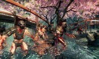 Shadow Warrior Steam Gift