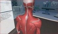 3D Organon VR Anatomy Steam CD Key