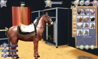 EquiMagic - Galashow of Horses Clé Steam