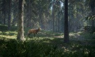 theHunter: Call of the Wild EU Steam CD Key